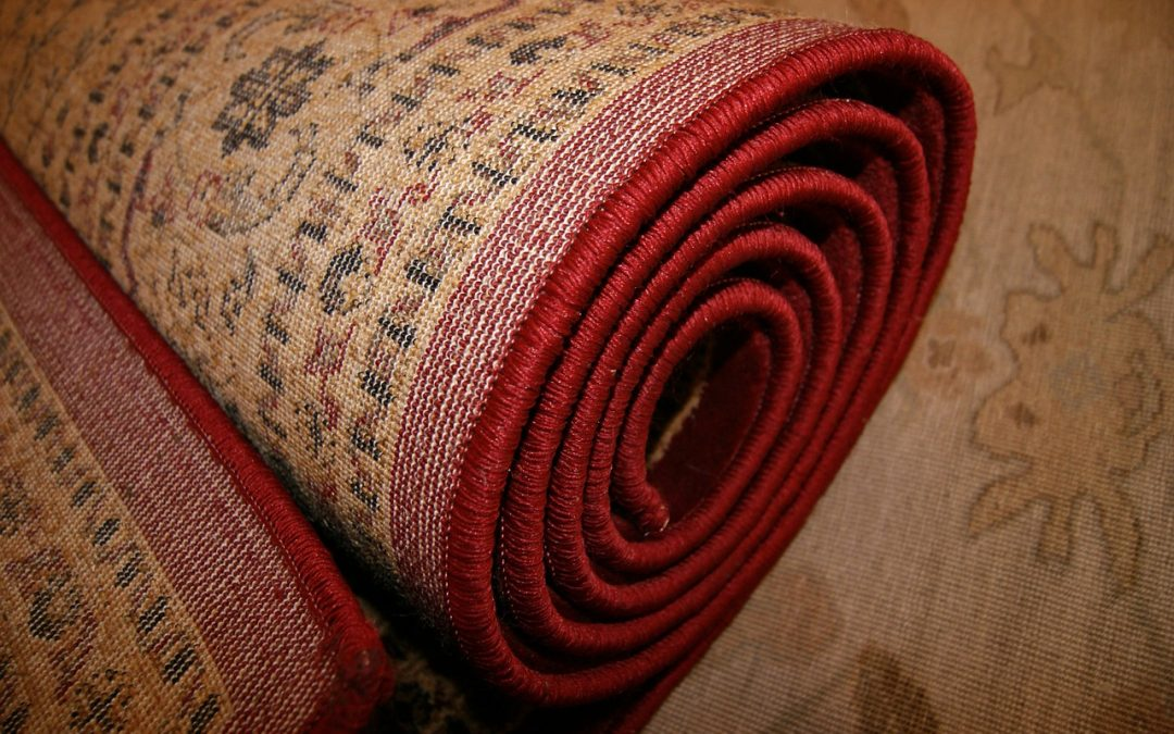 Cheap Carpet Options You'll Love