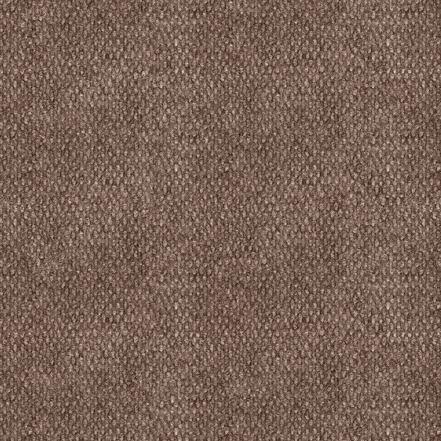HOME & OFFICE PAPAGO 12-FT. NEEDLEBOND INTERIOR/EXTERIOR CARPET